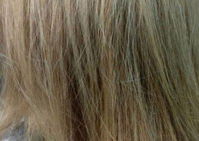 peluqueria-tempus-g18